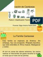 TM003-Identificación de Cactáceas II