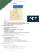 A periodização da história egipcia