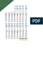 Flauta Doce - Posições