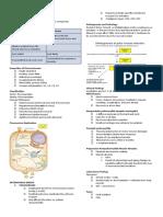 Micro-3637-PICORNAVIRIDAE-REOVIRUSES-ROTAVIRUSES-AND-CALCIVIRUSES[1]