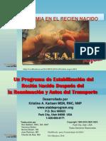 stablesugar2017-170519030821 (1).pdf