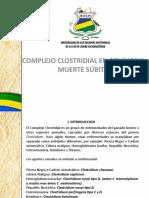 clostridiasis