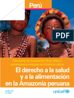 El indigenismo en el Peru una mirada conciente