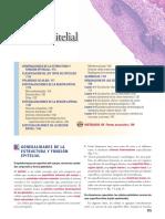 Epitelial y Conectivo.pdf