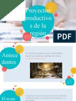 Proyectos Productivos de Desarrollo de La Región