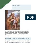Protector San José