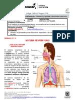 Ciencias Naturales_202_Semana 15-16 (1)