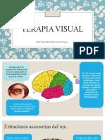 Terapia visual 1.pptx