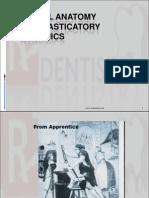 dental anatomy ppt