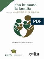 DERECHO HUMANO FAMILIA.pdf
