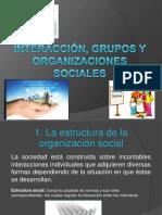 Interacción, Grupos y Organizaciones Sociales(1)