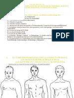 UNIDAD TEMÁTICA III 2014 2015