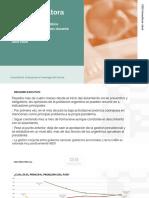 CEIS Consultora Informe Julio 2020