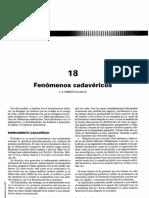 Temas 18 a 19.pdf