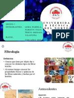 CLASE #1-Generalidades, Clasificación de Fibras