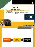 292365922-Indices-de-Volabilidad-Terminado.pdf
