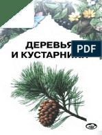 alekseev_iue_zhmylev_piu_karpukhina_ea_derevia_i_kustarniki.pdf