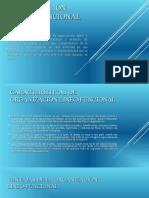 Organización-lineo-funcional