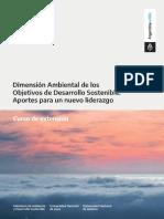 Programa Curso Dimensión Ambiental ODS.pdf
