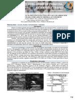 Resumo expandido - Anais - IV CPEE