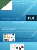 materiales paraquito14