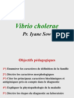 Vibrio cholerae.pptx