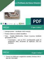 Prevenção e Profilaxia da  Raiva Silvestre 2020.pdf