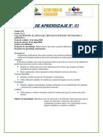 Anexo 6.Guía Secundaria versión final (Ejemplo) (1)