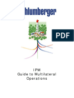 Guide to Multilateral Operations