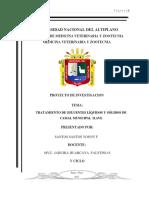 PROYECTO DE INVESTIGACION CAMAL DE ILAVE.pdf