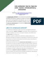 Lectura-Contaminación ambiental(1) (2)