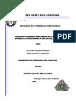 olguin_del_rosario_karina_2008.pdf