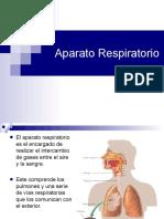 14. Aparato Respiratorio