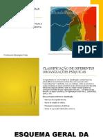 As_Grandes_Estruturas_de_Base
