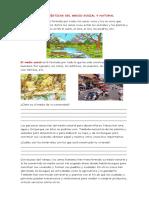 CARACTERÍSTICAS DEL MEDIO SOCIAL Y NATURAL (1)