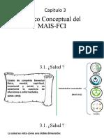 Marco Conceptual Del MAIS-FCI