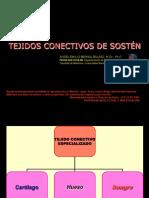 4. Cartilago & Hueso (1).pdf