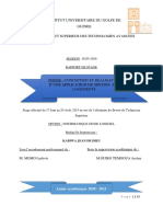rapport 1.0.pdf