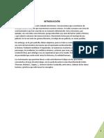 0resumen_audiovisuales-patatabrava