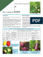 ftec_aubergine (1).pdf