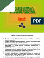 curs 2 Citologie vegetala