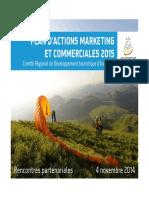 plan-d-actions-marketing-et-commerciales-2015