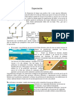 Especiación_biología
