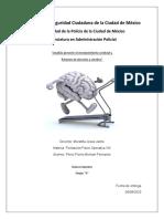 analisis envejecimiento cerebral