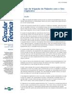 Manejo da Irrigação do Feijoeiro com o Uso.pdf
