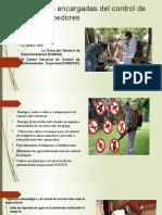 INTITUCIONES ENCARGADAS DE MANEJO DE DECECHOS SOLIDOS