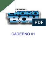 Caderno 01 NUMERADO