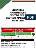 21  Licencias Ambientales