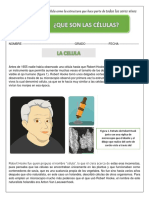 guia 1 . la célula 4 pdf