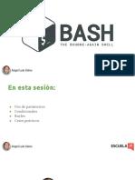 Curso Bash - Tema 2.pdf
